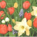 Ubrousek - jarní květy