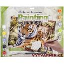 Malování podle čísel - senior - tygři