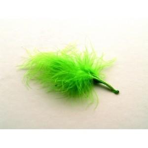 Peří marabu malé 10 ks -světle  zelené