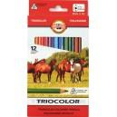 Pastelky Koh-i-noor Triocolor - 12 kusů