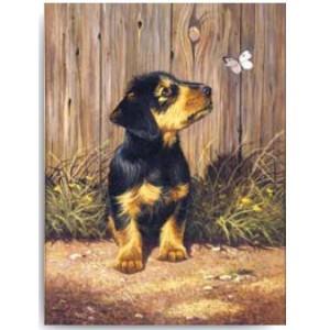 Malování podle čísel - junior - štěně jezevčíka