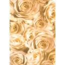Pauzovací papír  A4 - růže champagne