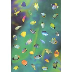 Pauzovací papír  A4 - mořské ryby
