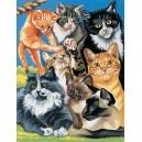 Malování podle čísel - junior - kočičí svět